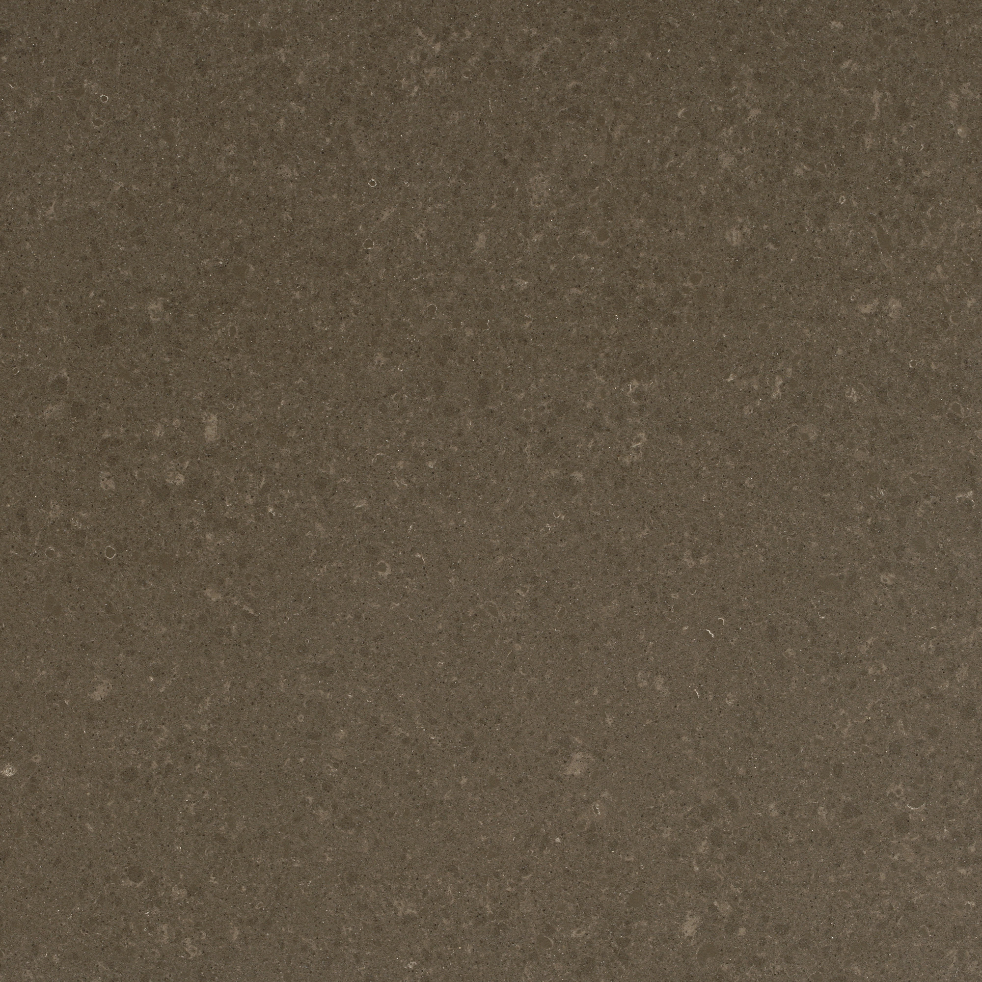 Wild Rice 4360 Omicron Granite Amp Tile