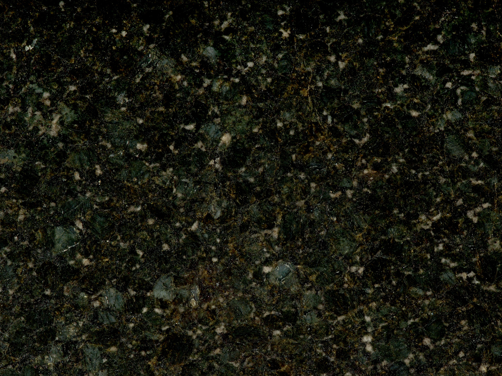 Butterfly Green Omicron Granite Amp Tile
