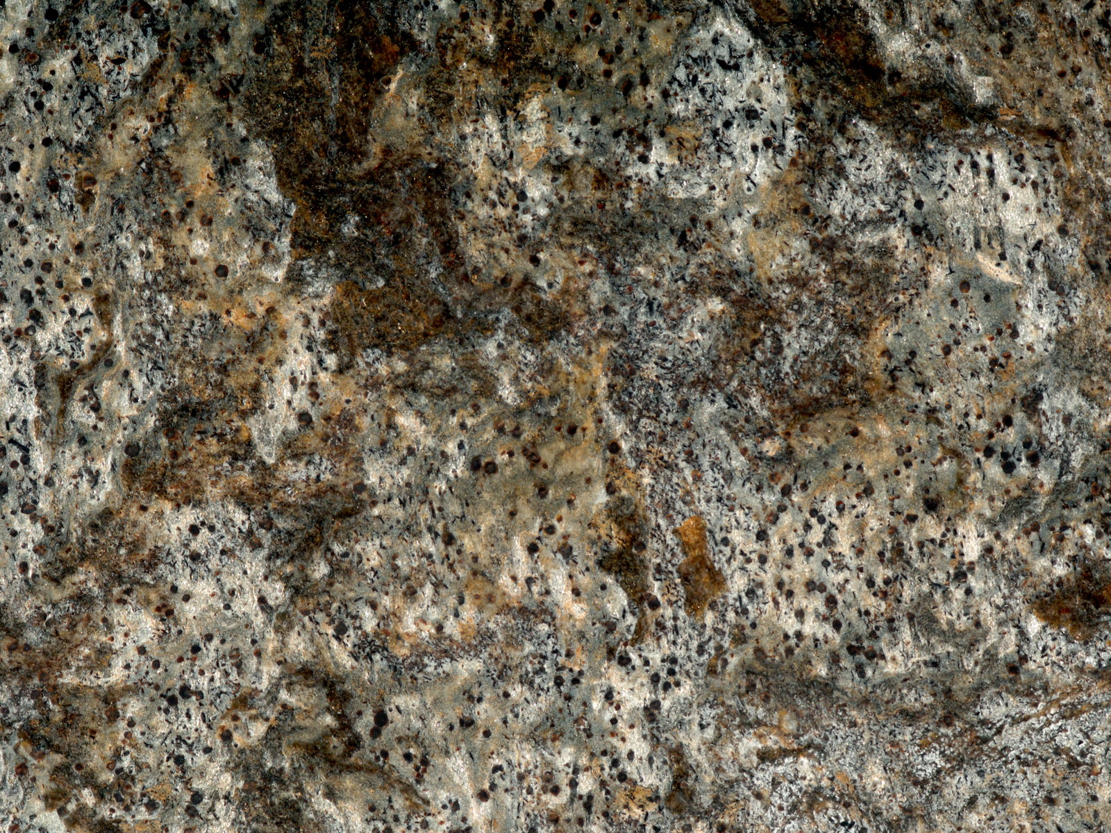 Cosmos Brushed Omicron Granite Amp Tile