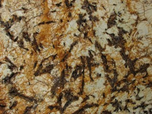 Splendor Gold - granite