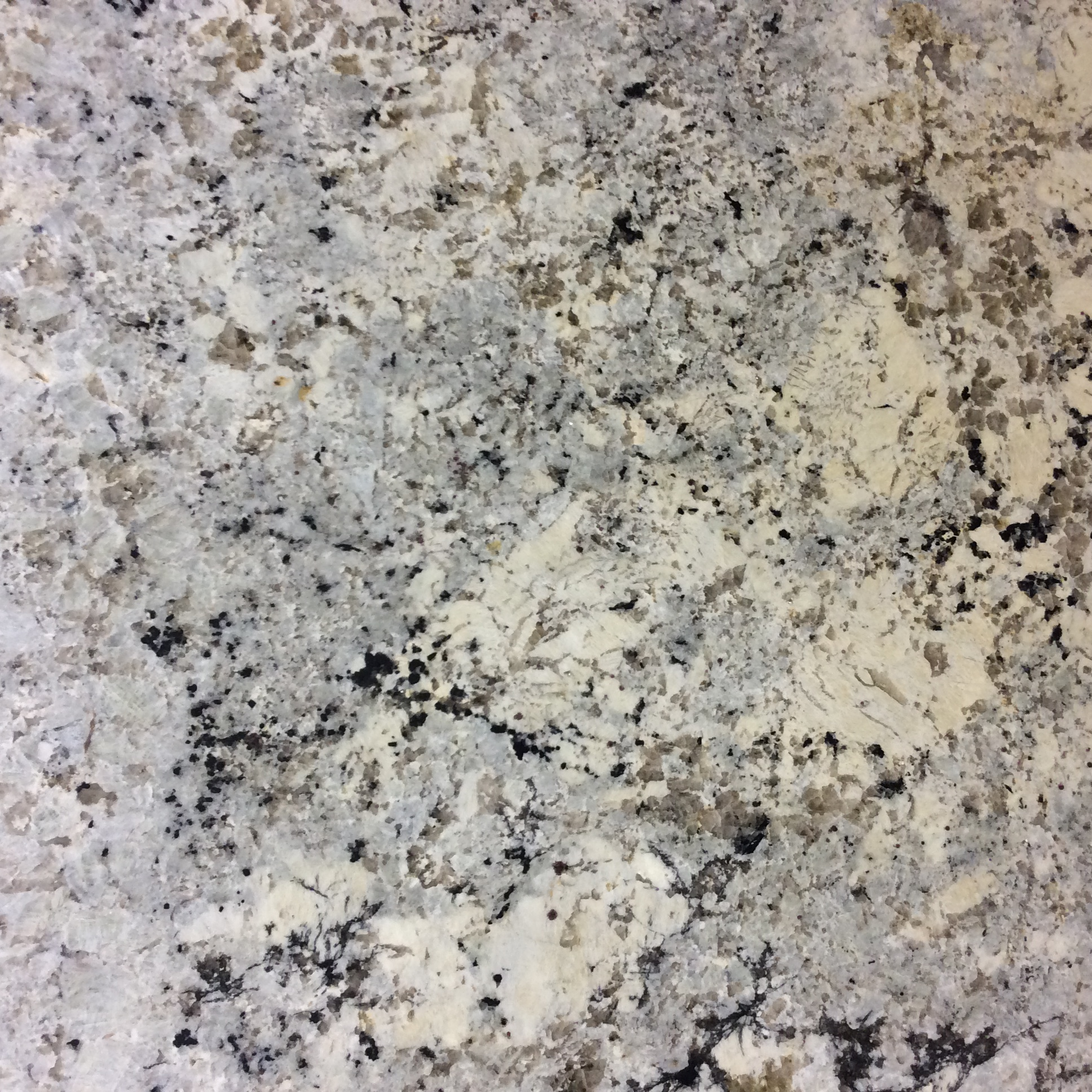 Alaskan White Omicron Granite Tile