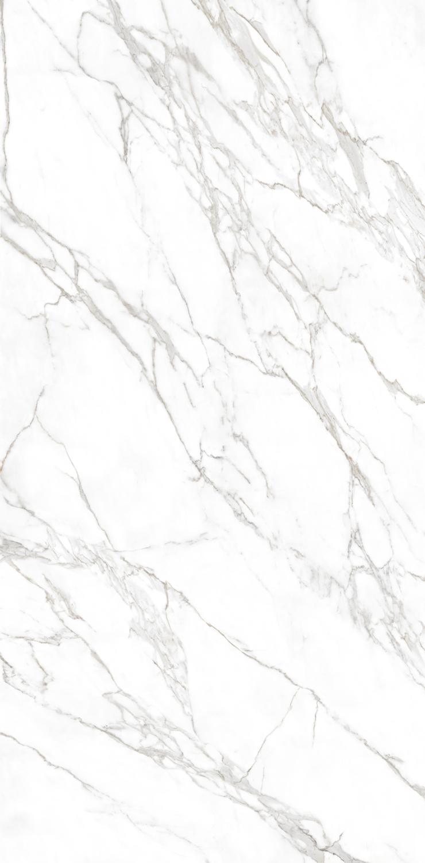 Calacatta Polished Amp Silk Finish Omicron Granite Amp Tile